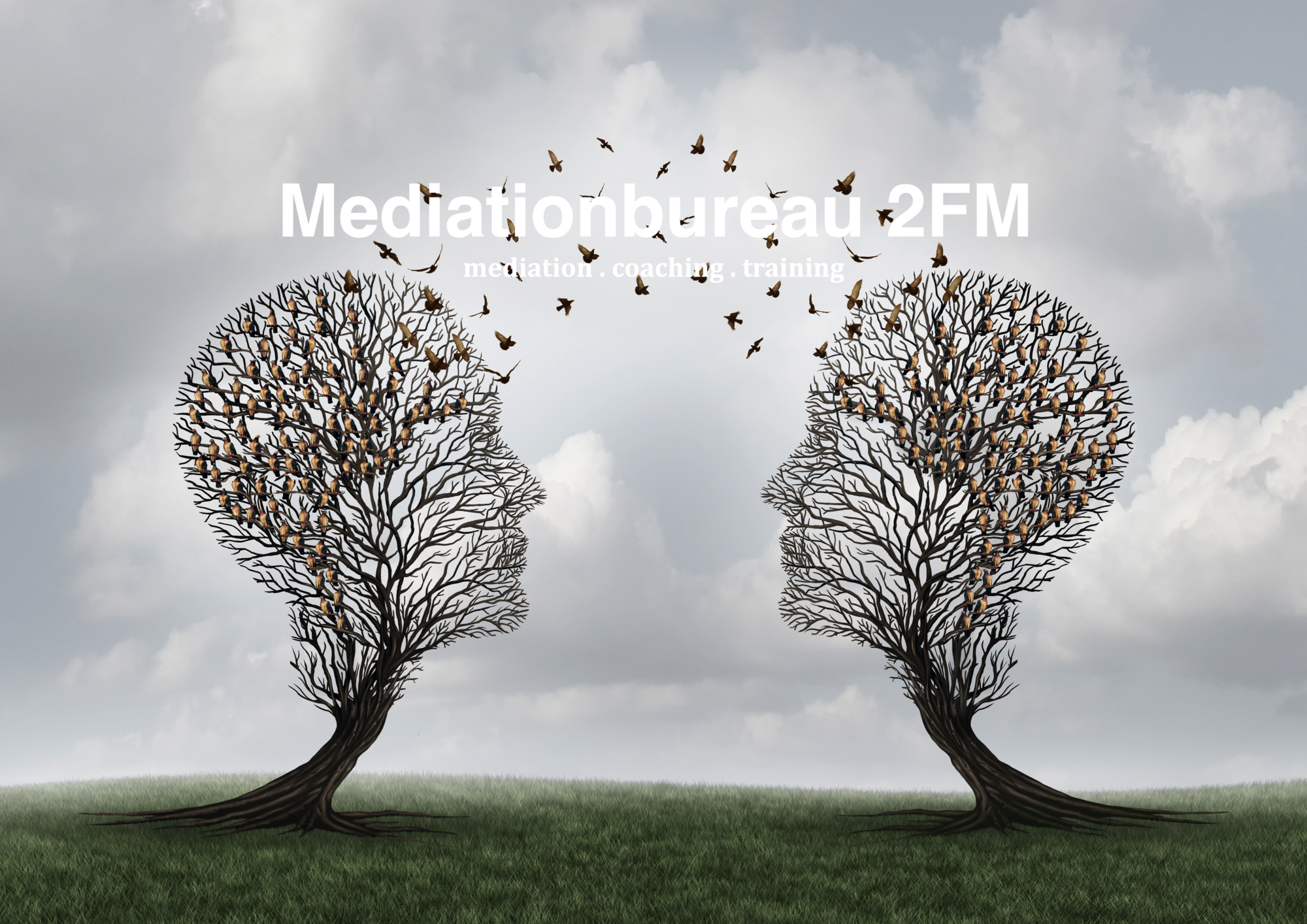 ARBEIDSMEDIATION . HERSTELMEDIATION . SCHEIDING EN FAMILIE MEDIATION . ZAKELIJKE MEDIATION